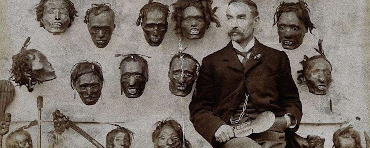 Коллекция голов маори