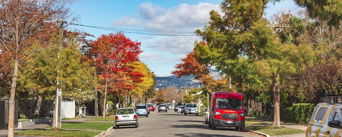 Осенняя улица в Крайстчерче