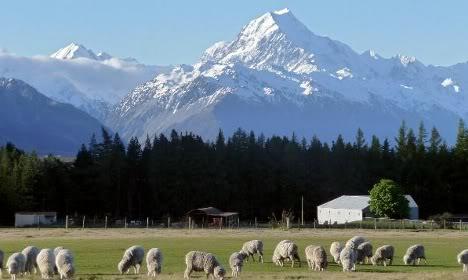 Новая Зеландия. Гора Mt.Cook