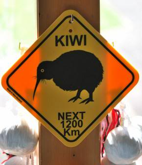 Почему новозеландцы - киви?