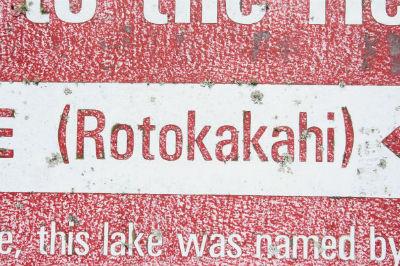Озеро Rotokakahi (или Green Lake - Зеленое озеро)