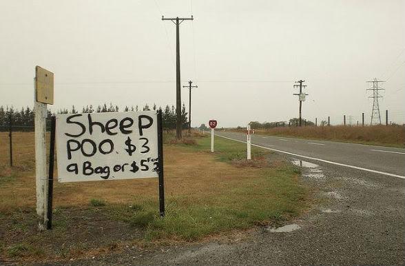 Фото-юмор по-новозеландски