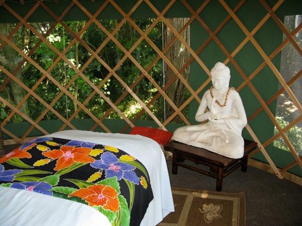 Nikau Sanctuary, Raglan