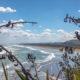 Пляж Муривай