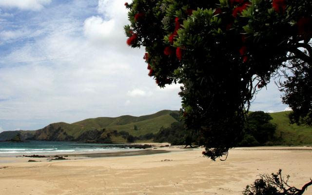 10 лучших пляжей Новой Зеландии